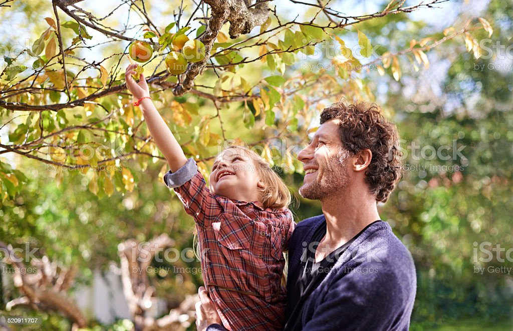 I want that one dad! stock photo