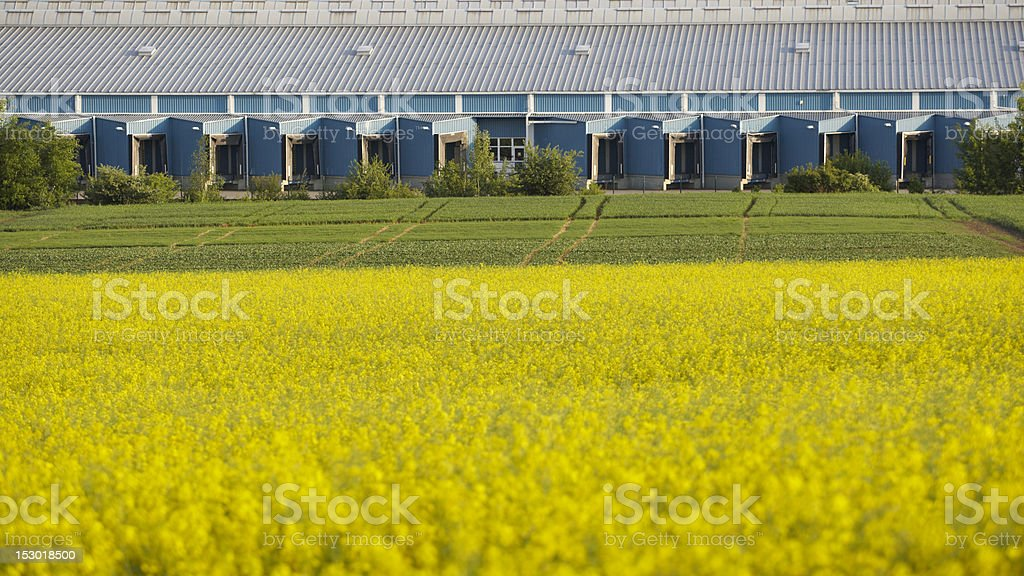 Warehouse in nature royalty-free stock photo
