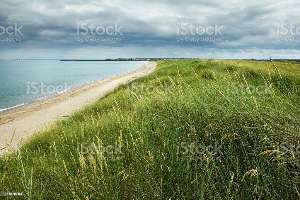 Warkworth Beach stock photo