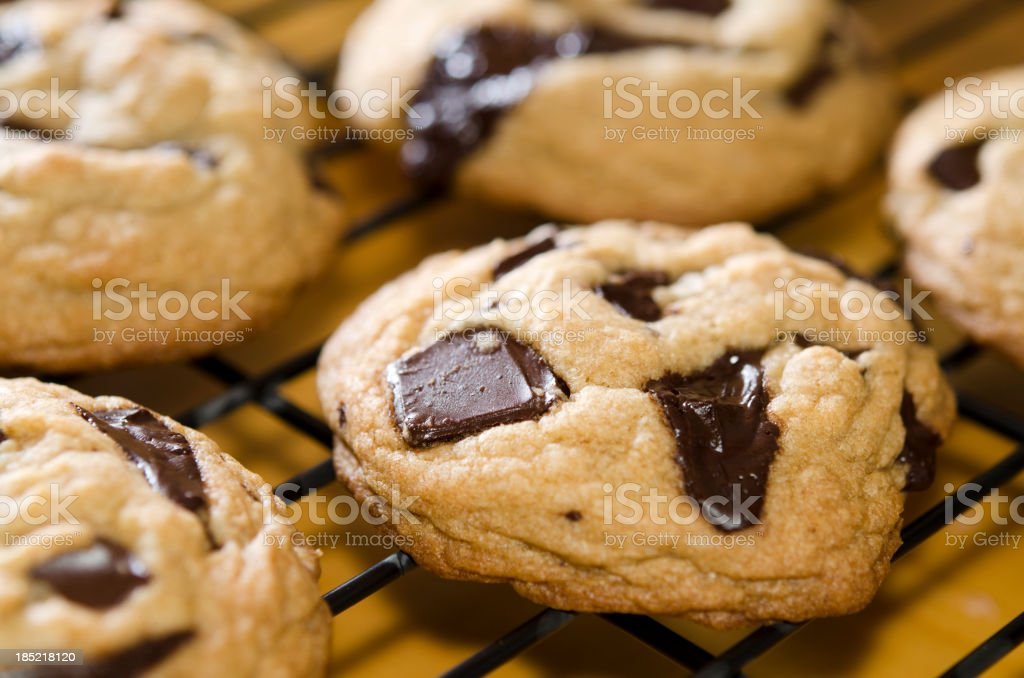 Warm Chocolate Chunk Cookies stock photo