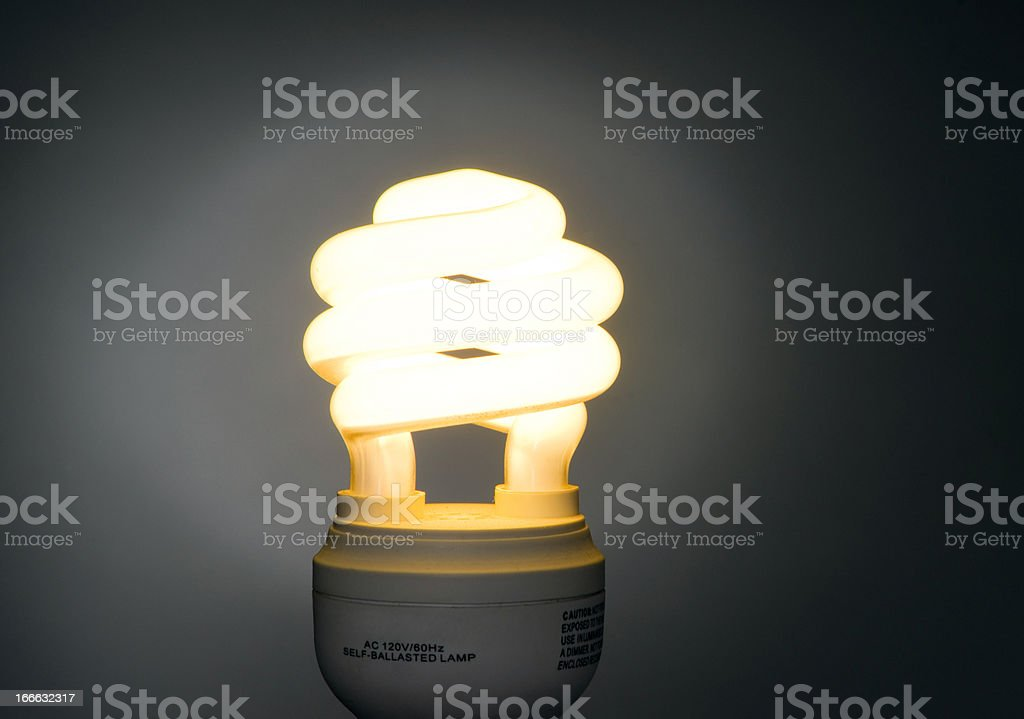 Warm Color Low Wattage Self Ballasted Fluorescent Light Bulb royalty-free stock photo