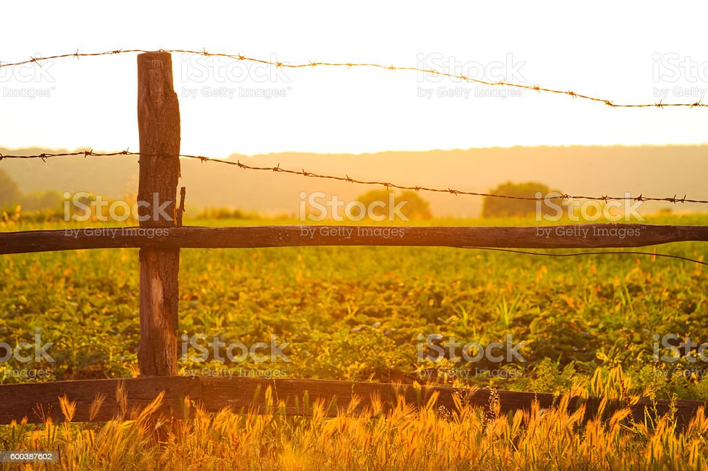 Warm glowing country sunset stock photo