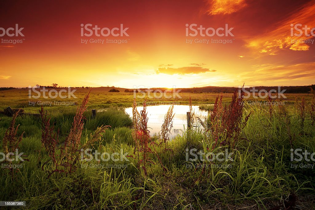 Warm glowing field royalty-free stock photo