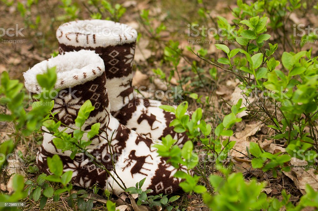 Warm socks for women in the forest stock photo