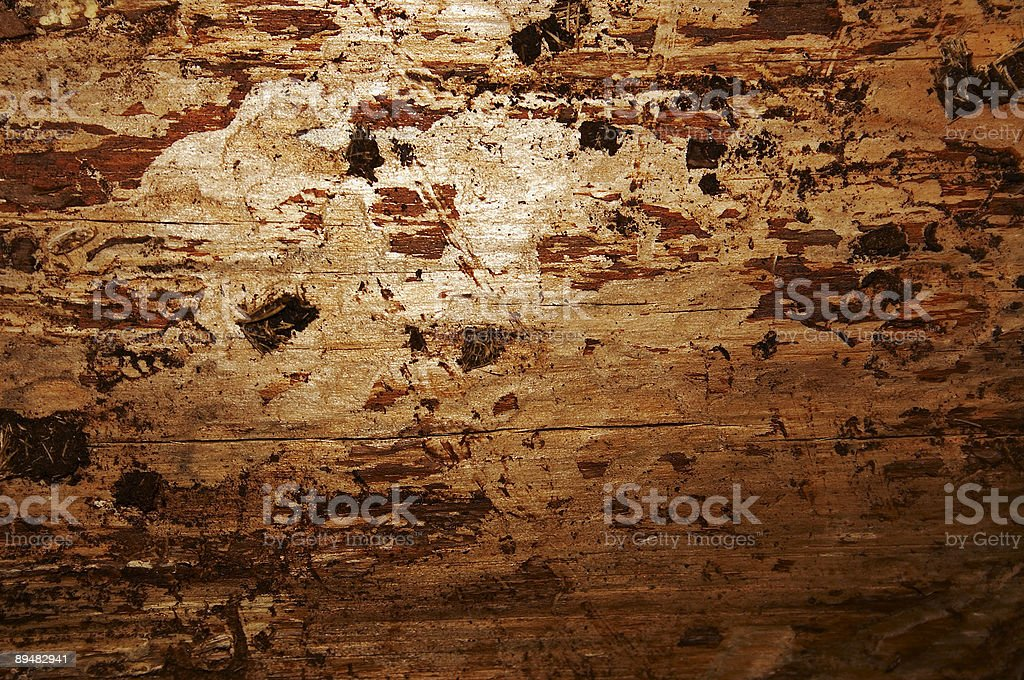 Warm wooden texture royalty-free stock photo