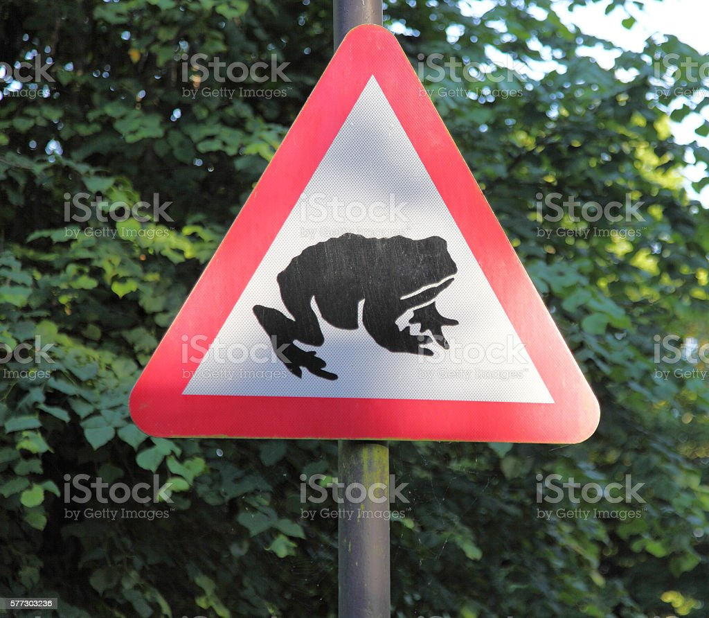 warning road sign triangle for frogs ! stock photo