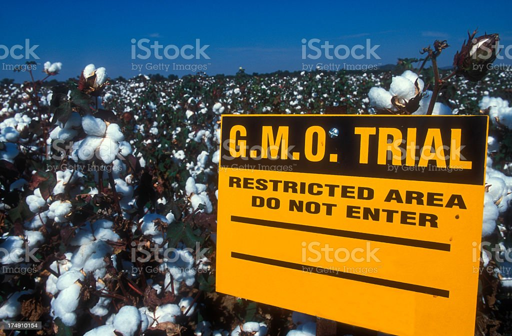 Warning sign for GMO trial area in field stock photo
