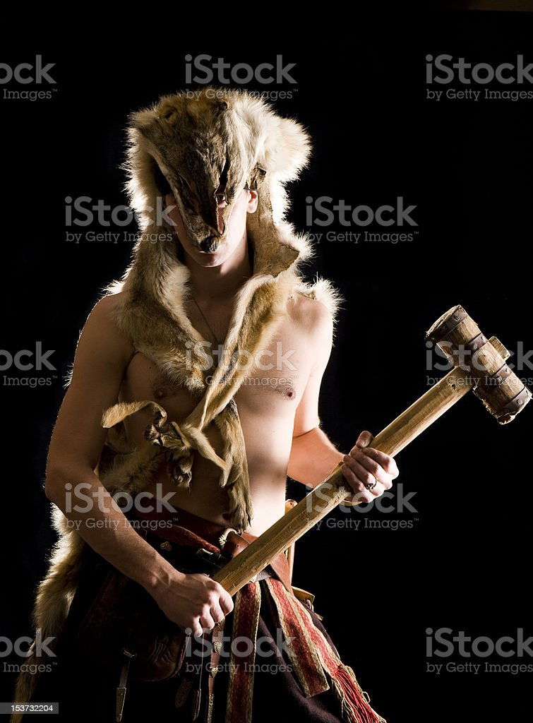 Warrior in the wolf skin. royalty-free stock photo