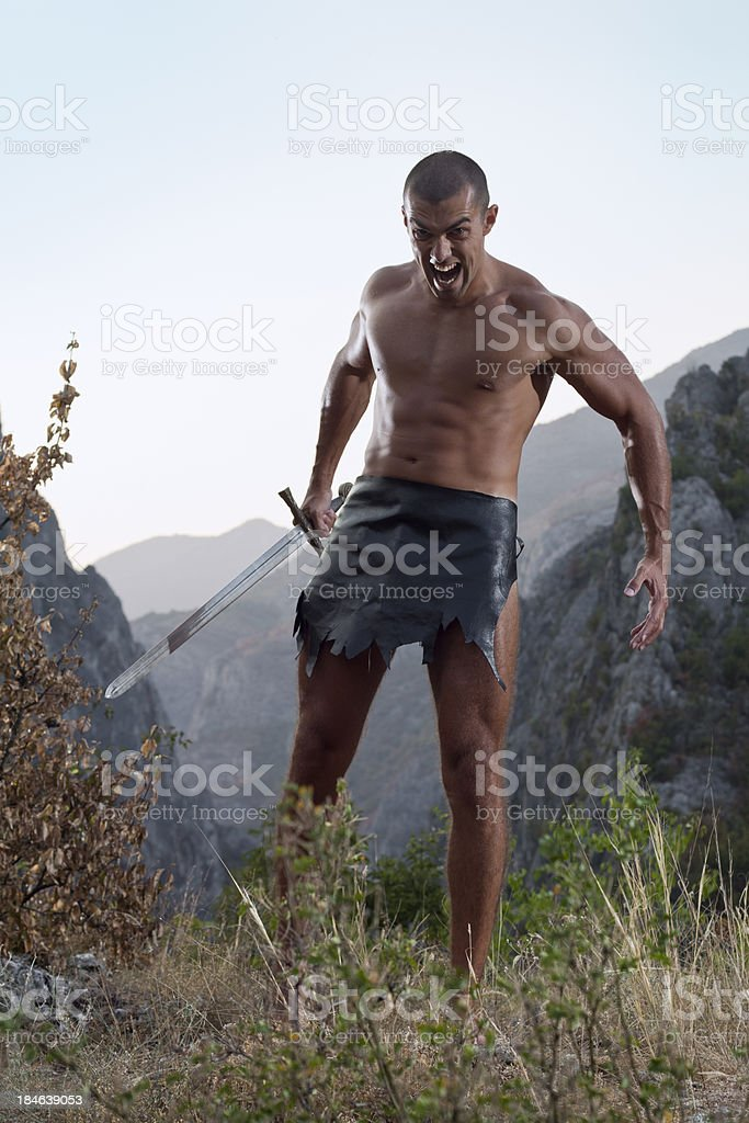 Warrior ready for attack royalty-free stock photo