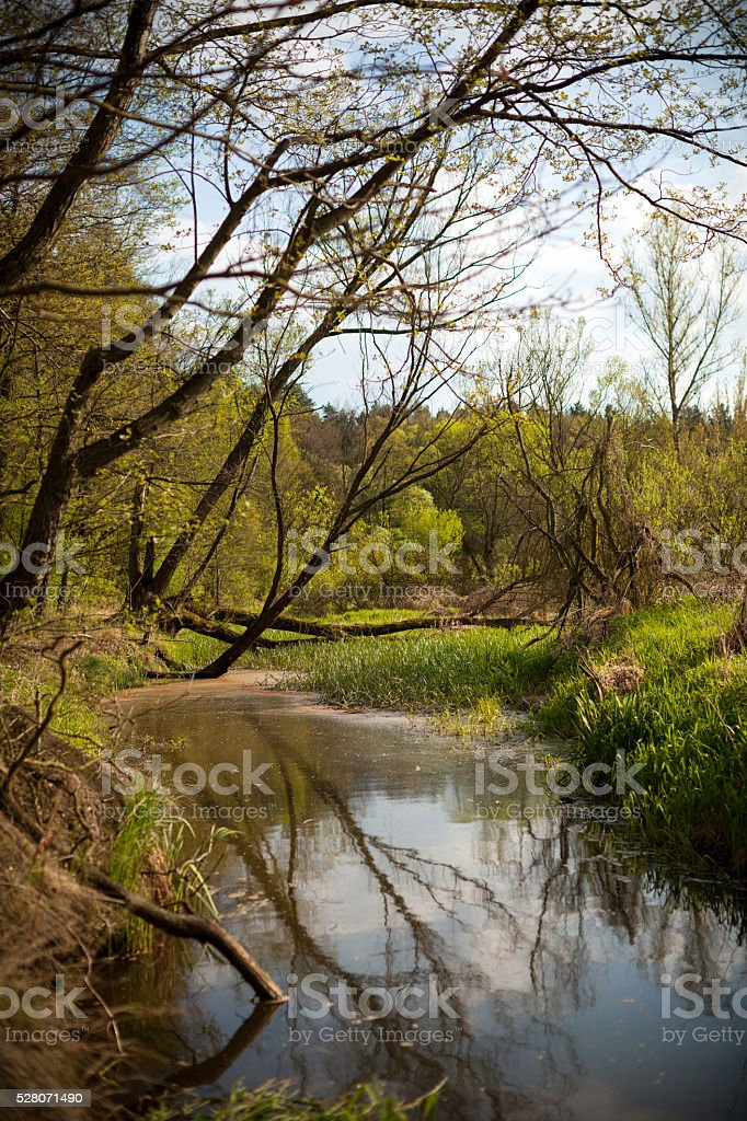Warta river, Poland, Europe stock photo