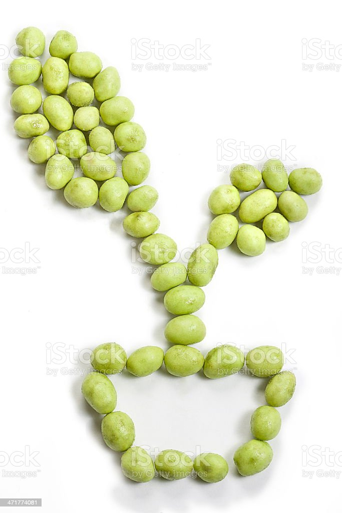 wasabi peanut tree pot royalty-free stock photo