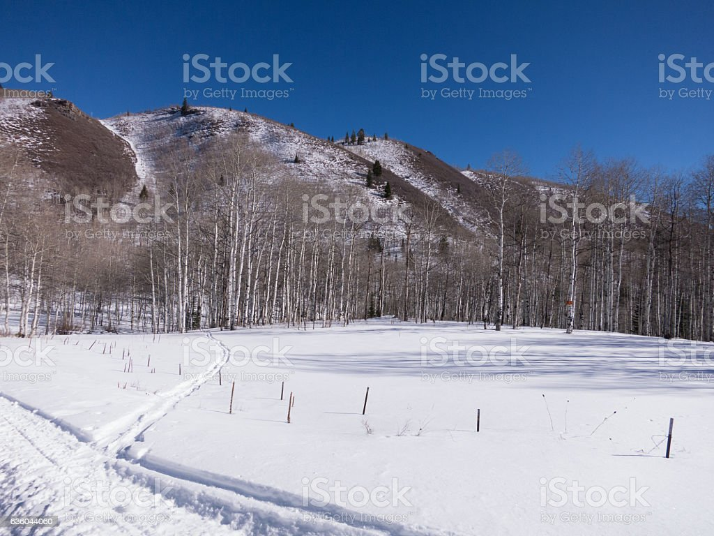 Wasatch Mountain range covered in fresh snow, sparkles in the sunshine. stock photo