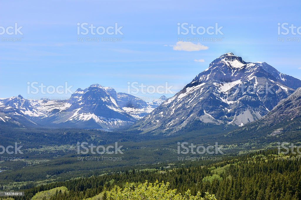 Wasatch Mountain Valley Forest stock photo
