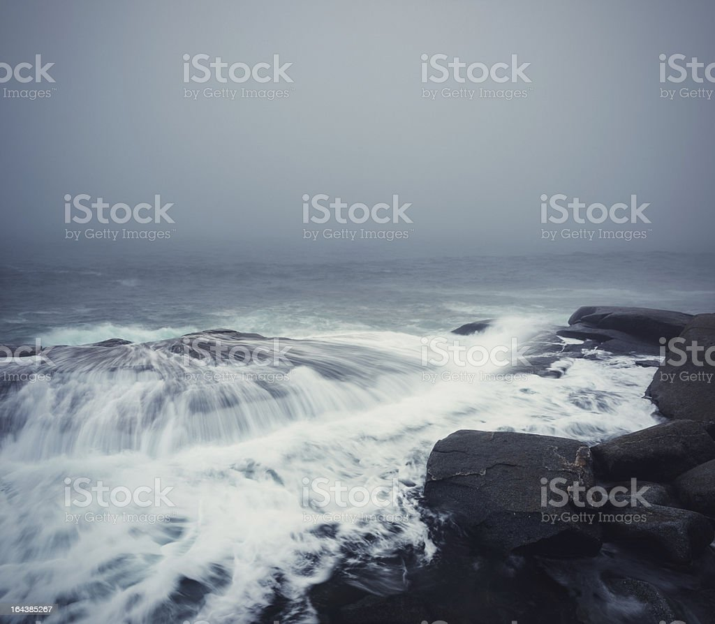 Wash Ashore royalty-free stock photo