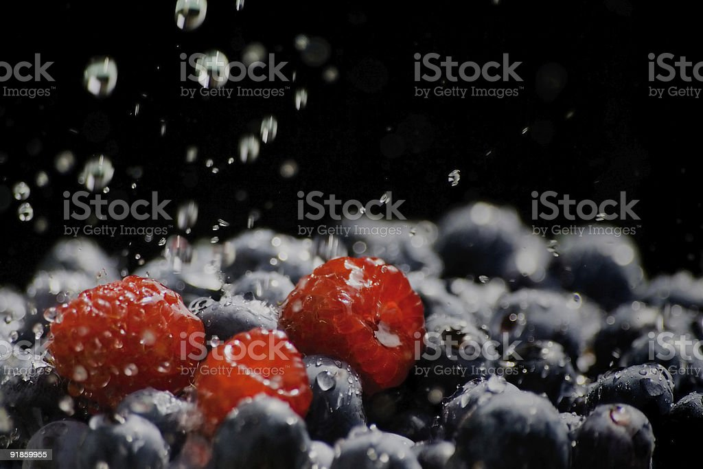 Wash-berries royalty-free stock photo