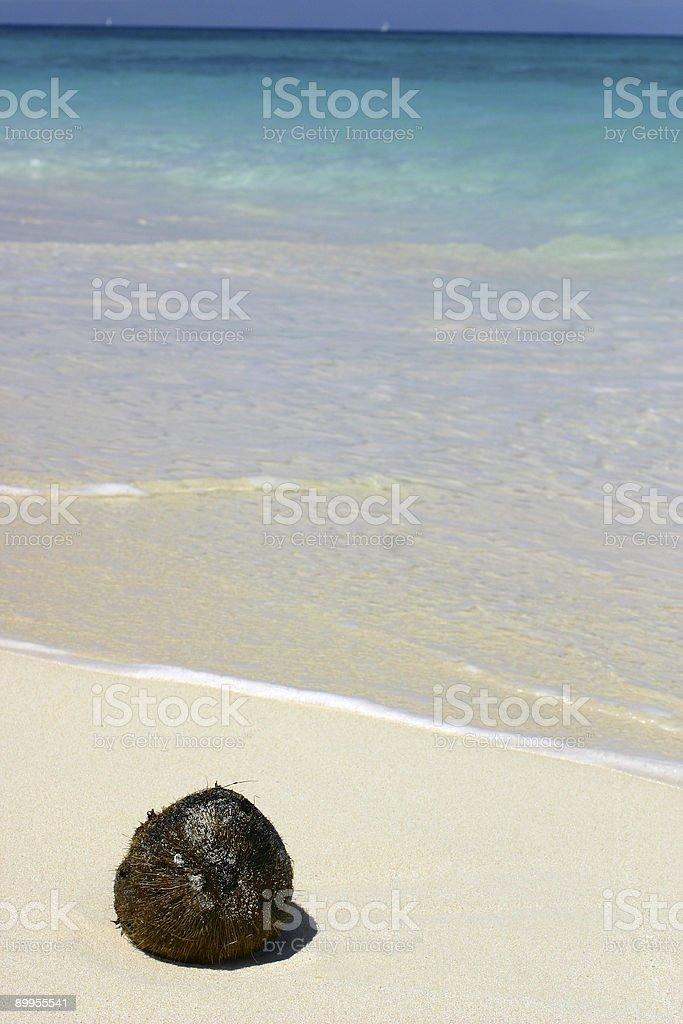 Washed Ashore 3 stock photo