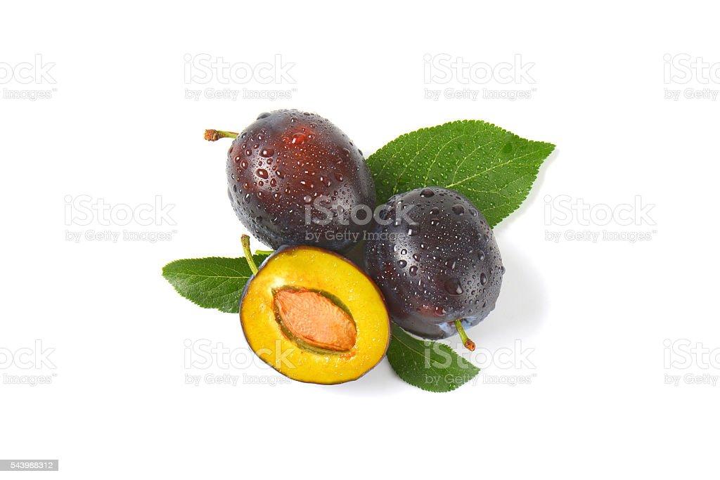 washed fresh plums stock photo