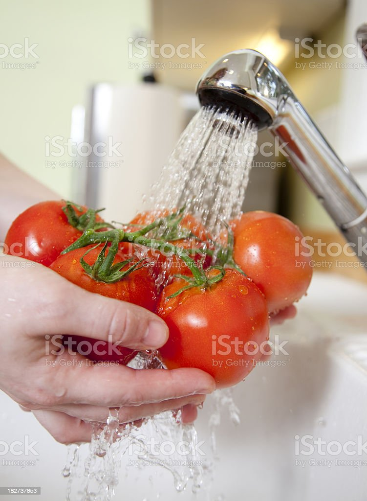 Washing a bunch of tomatoes royalty-free stock photo