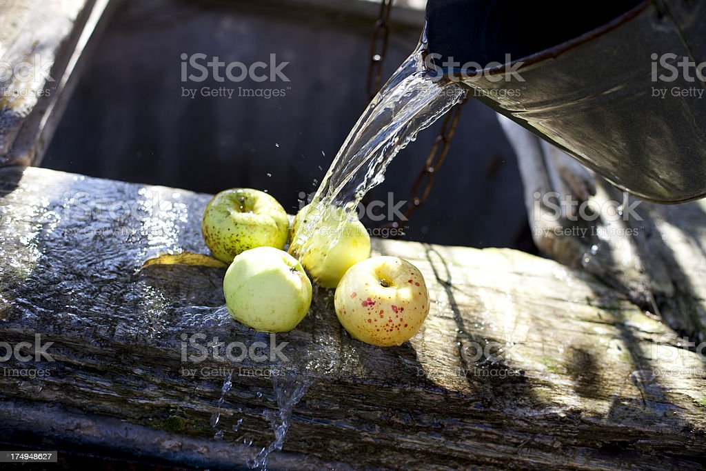 Washing Apples royalty-free stock photo