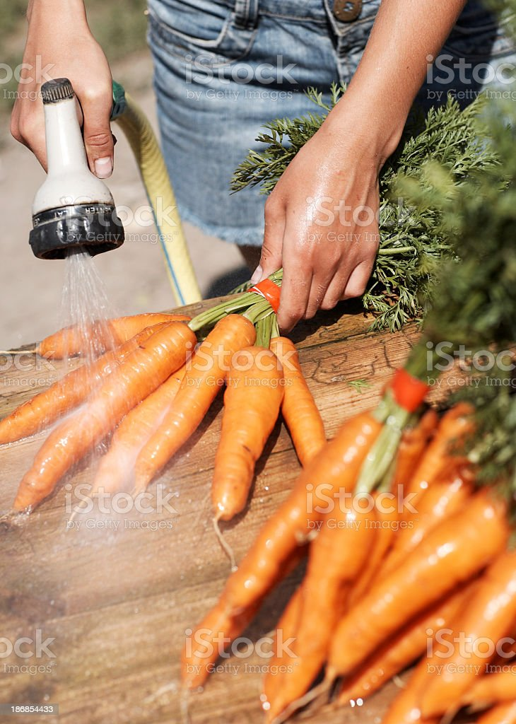 Washing carrots stock photo