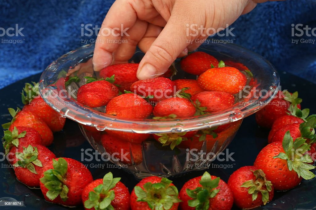 Washing Strawberries royalty-free stock photo