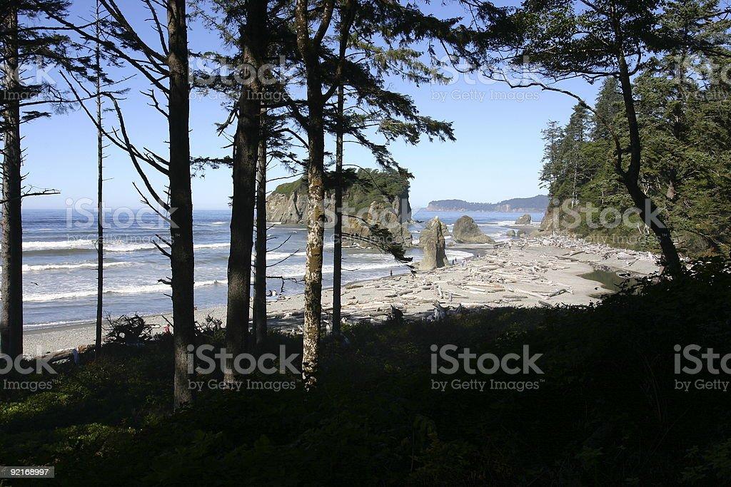 Washington Beach royalty-free stock photo