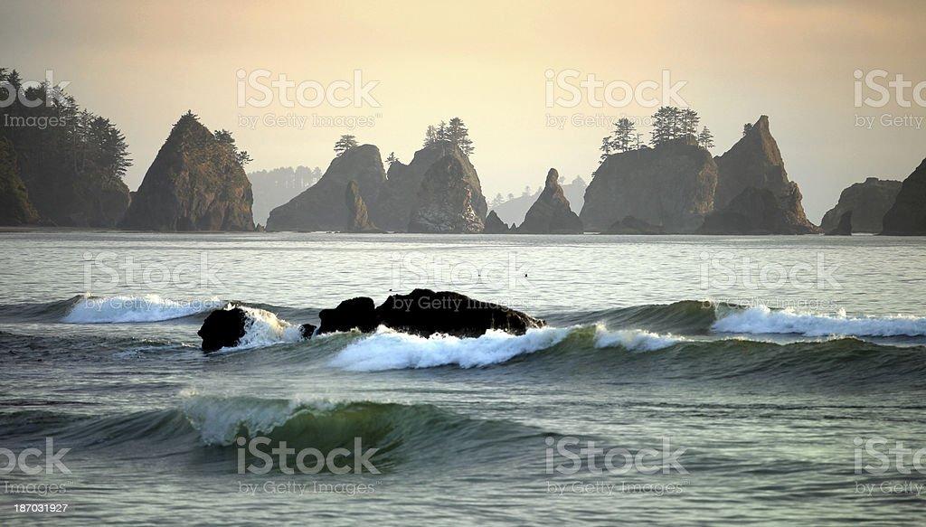 Washington Coast in Sunset stock photo