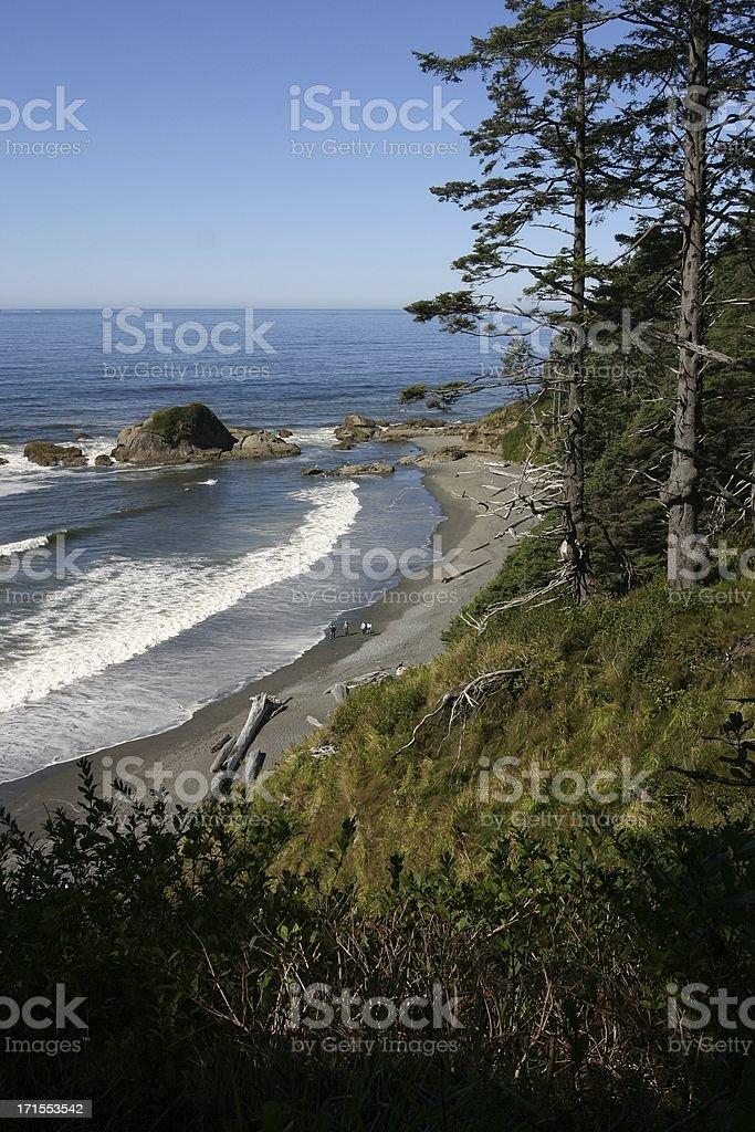 Washington Coast royalty-free stock photo