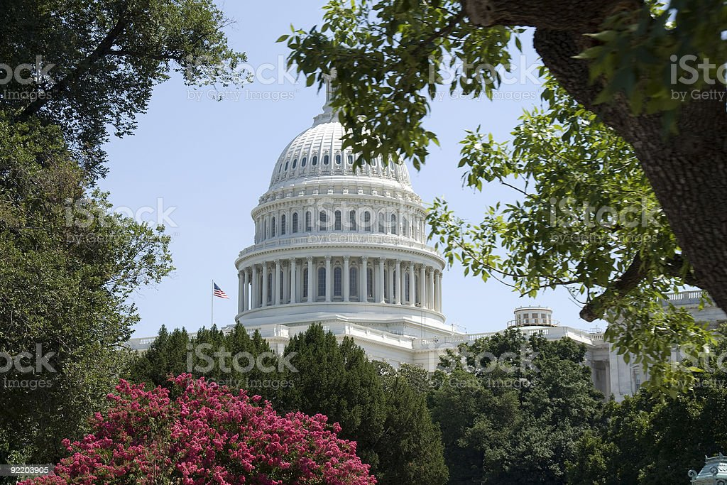 Washington, DC - City of Trees royalty-free stock photo