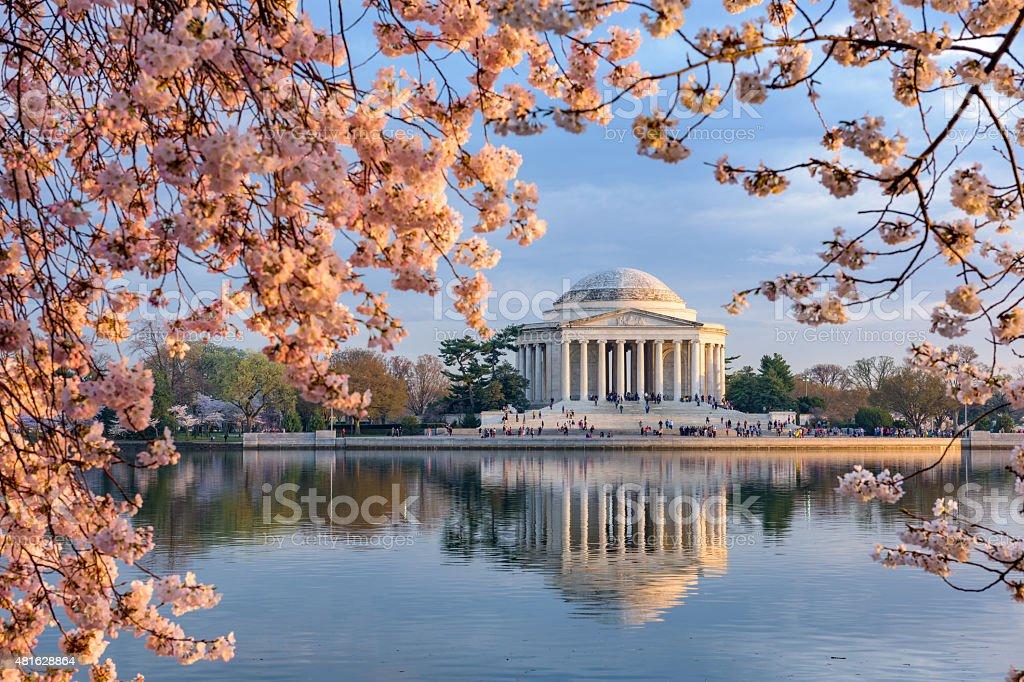 Washington DC in Spring stock photo