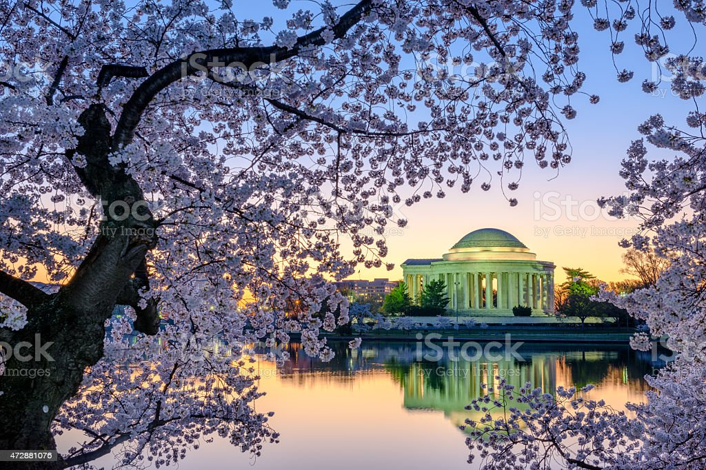 Washington DC Springtime stock photo