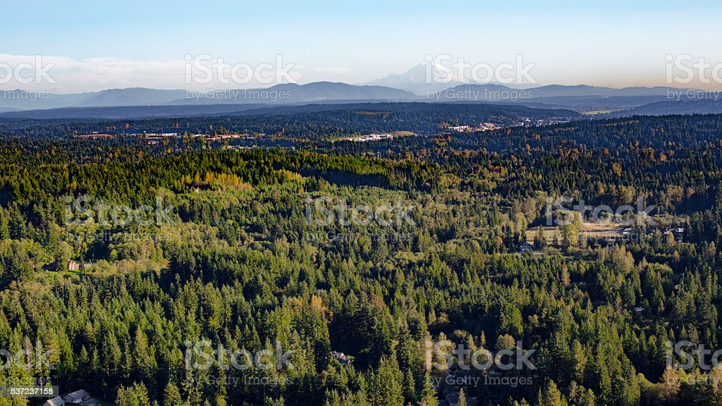 Washington State Suburban Forest Mount Rainier Cascade Mountains Backdrop stock photo