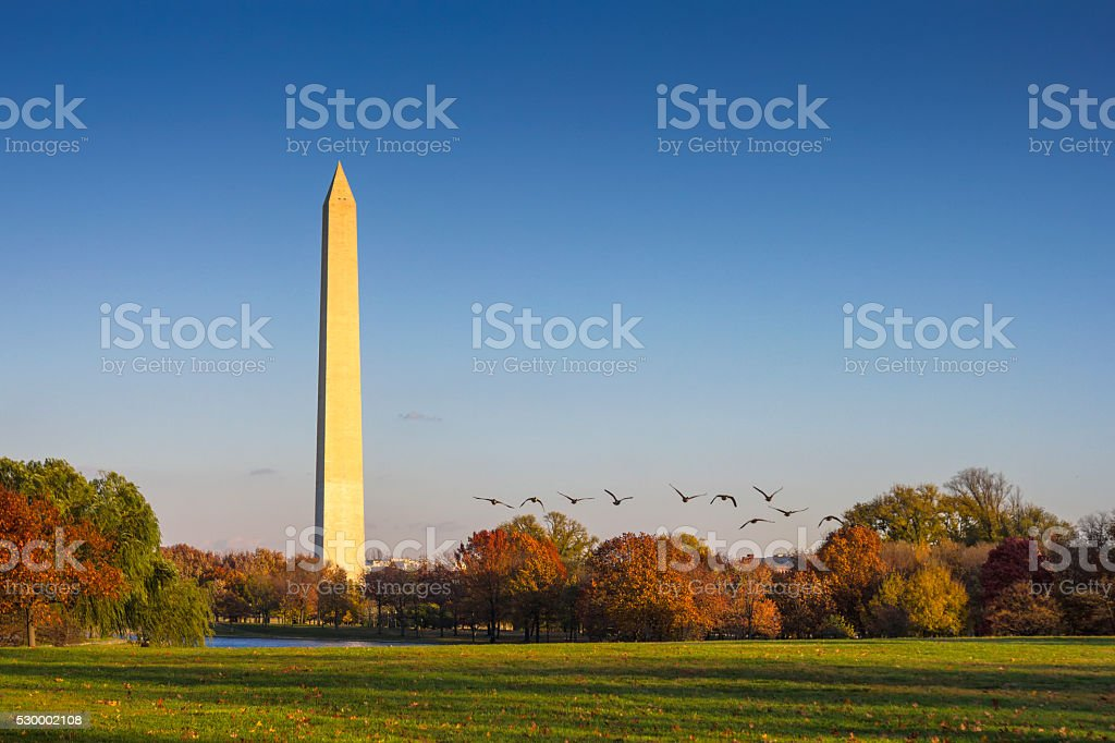 Washington,D.C. stock photo