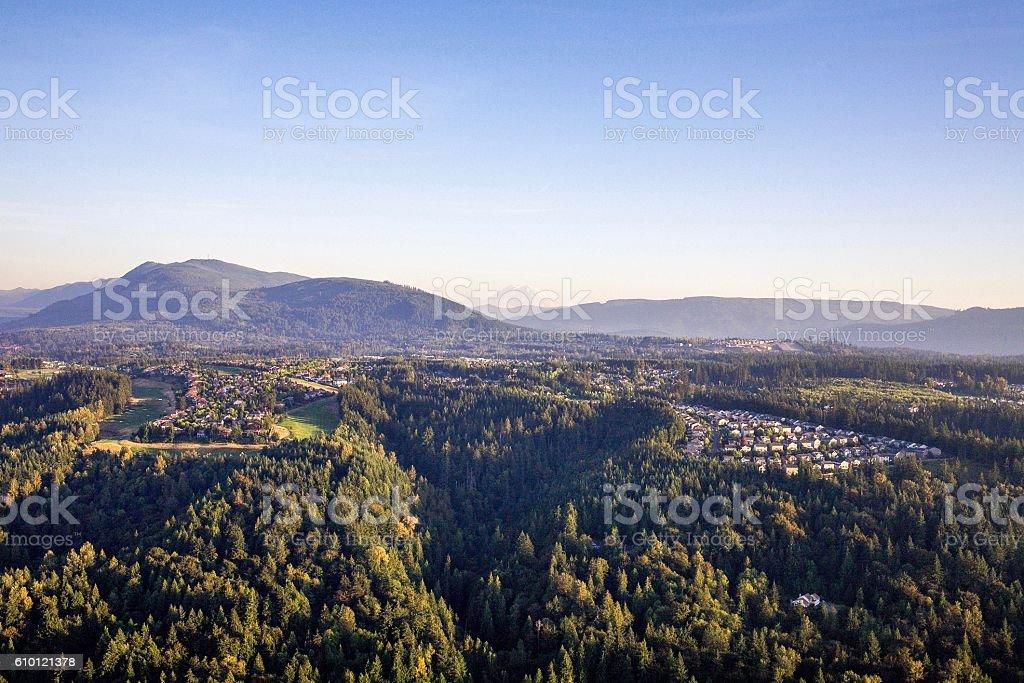 Washington's Nature Side (Beautiful tall trees and mountain Rainier) stock photo