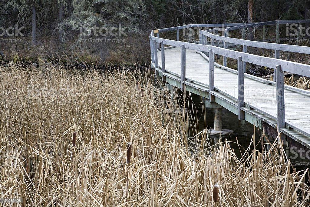 Waskesiu Hiking Trail stock photo