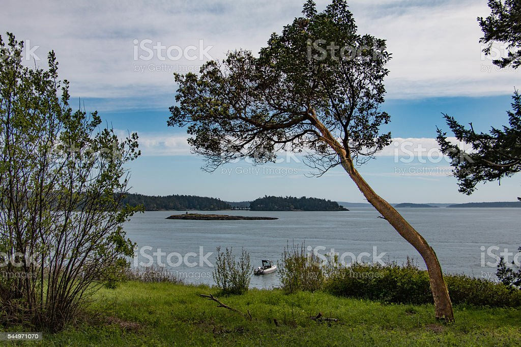 Wasp Islands view of Puget Sound stock photo