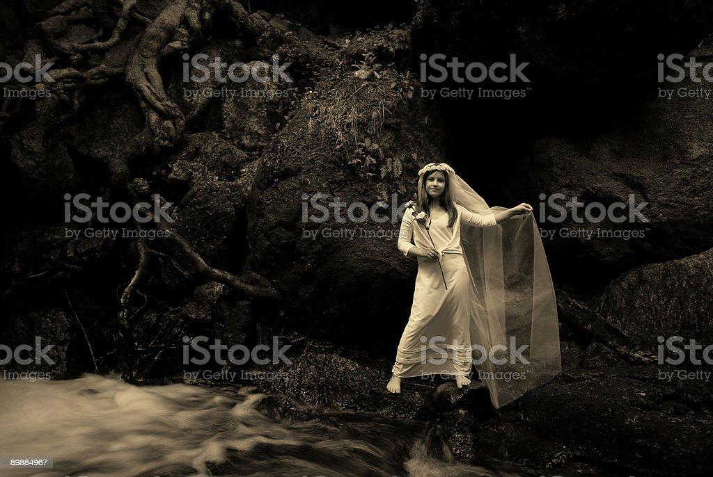 Wasserfallkindbrautsepia royalty-free stock photo