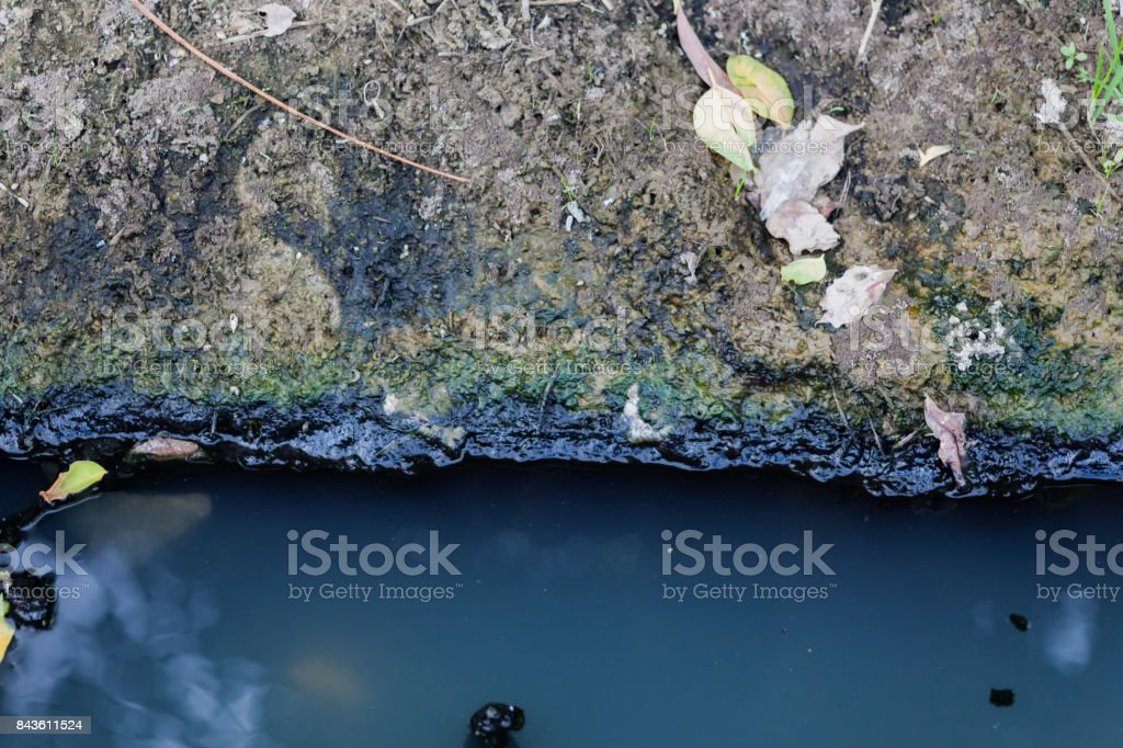 Waste pond stock photo
