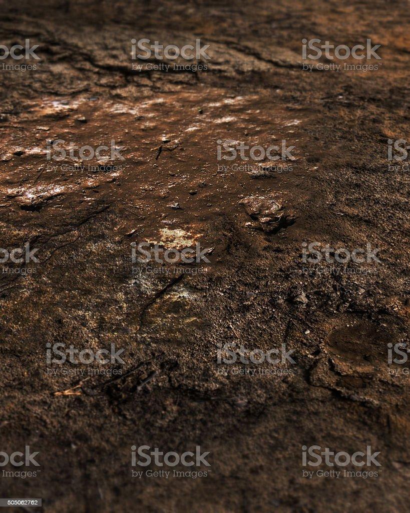 Wasteland Muddy Ground Background stock photo