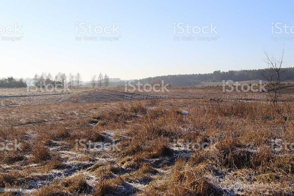 wastelands and meadows royalty-free stock photo