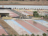 Wastewater Desalination