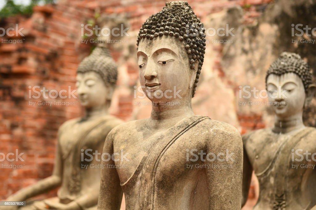 Wat Chaiwatthanaram temple in Ayuthaya Historical Park stock photo