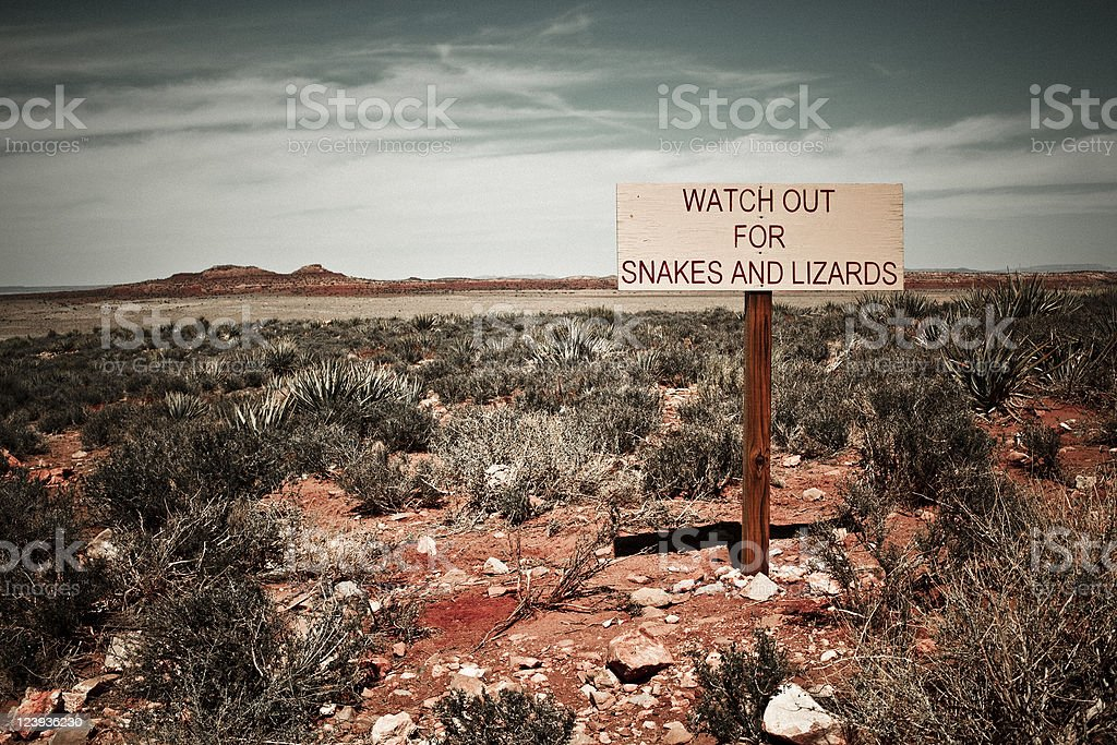 Watch Out for Snakes and Lizards stock photo