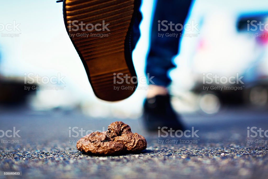 Watch out! Unsuspecting foot about to step in dog feces stock photo
