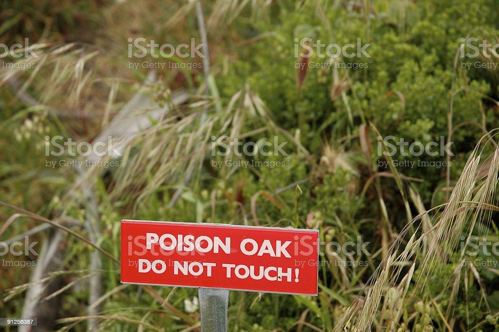 Watch the poison oak stock photo