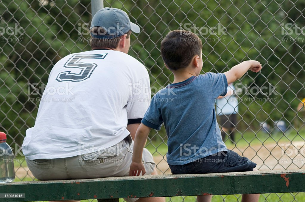 Watching a Baseball Game royalty-free stock photo