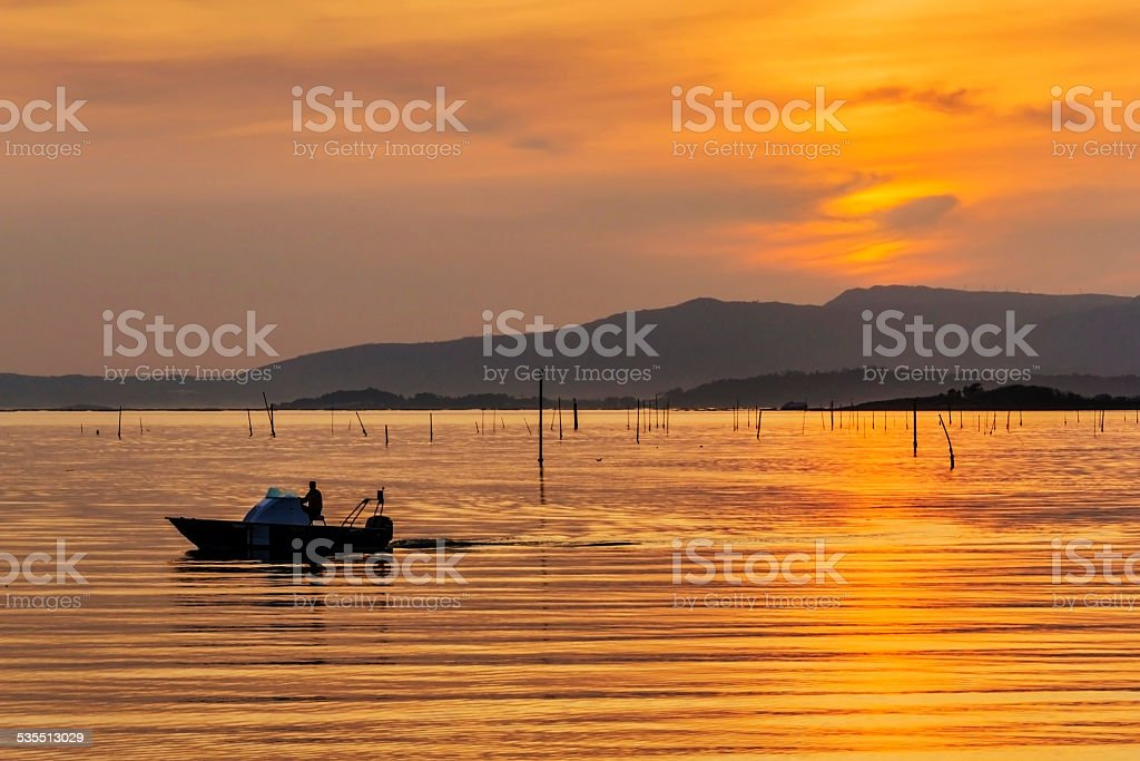 Watching aquaculture clam parks of Carril stock photo