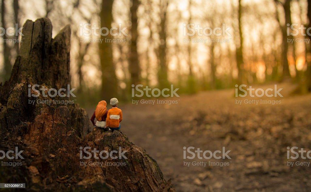watching forest sunrise couple stock photo