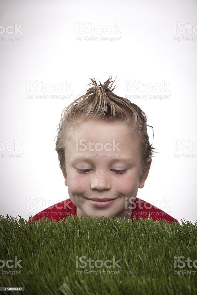 Watching grass grow royalty-free stock photo