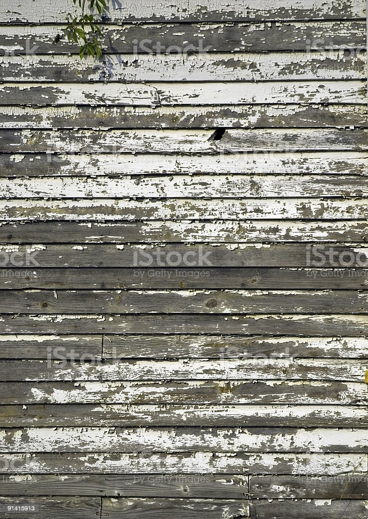 Watching Paint Chip royalty-free stock photo